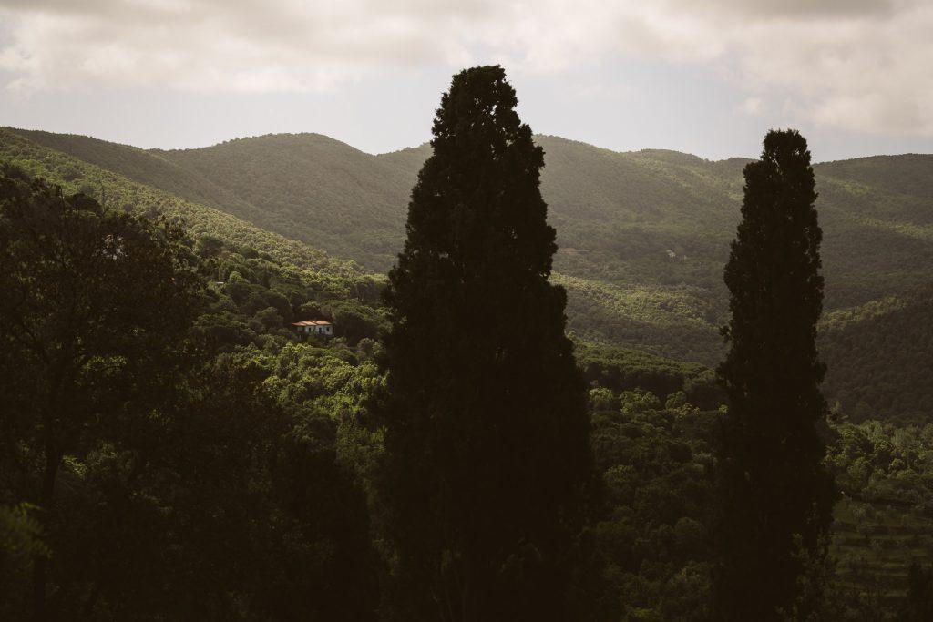 0445-Castagneto-Carducci